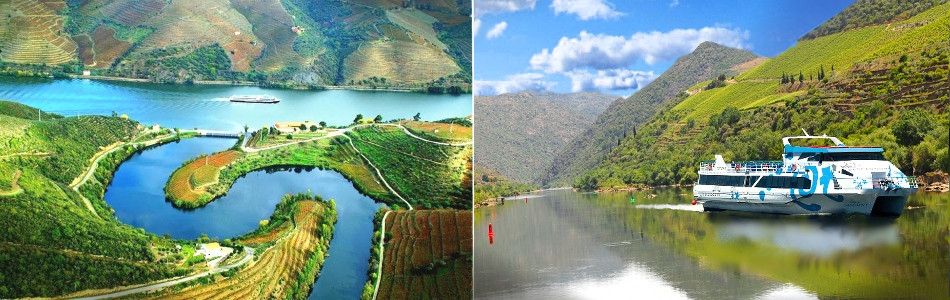 1 Day Cruises in Douro Valley